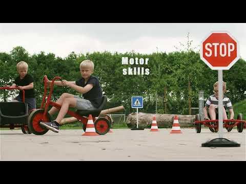 Viking Tricart Tricycle - Big*