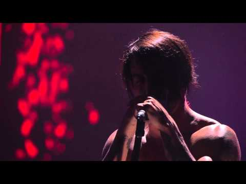 Red Hot Chili Peppers - The Adventures of Rain Dance Maggie (HD) LIVE from Cologne