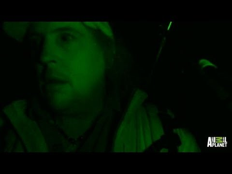 Major Sighting During Intense Night Investigation | Finding Bigfoot - Animal Planet  - u9Bnbd5bfjA -