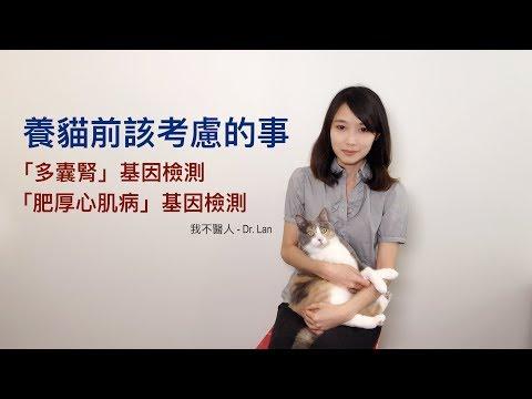 貓多囊腎與肥厚心肌病基因檢測