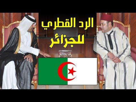 بسبب المغرب..الرد القطري للجزائر