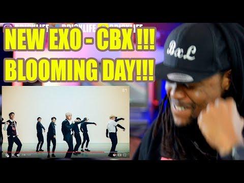 EXO-CBX (첸백시) '花요일 (Blooming Day)' MV | BLACK GUY REACTION!!!