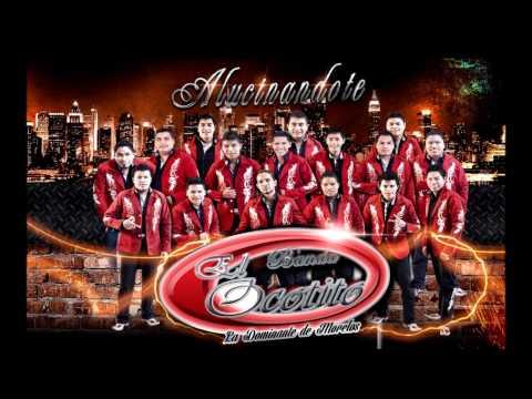 El Son Del Ocotito - Banda El Ocotito 2013 (Alucinandote)
