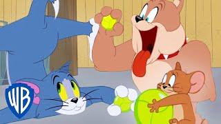 Tom a Jerry  - Tomova vysnívaná lopta