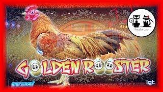 Mega Vault 💰 Tree of Wealth 🌳 Golden Rooster 🐓 The Slot Cats 🎰😺😸