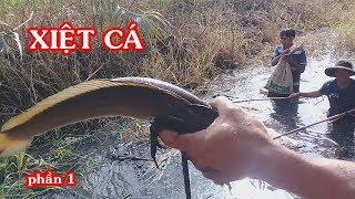 Xiệt cá lóc trúng mánh rồi (hấp dẫn lắm) - catch fish too much - Phần 1