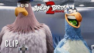 The Angry Birds Movie 2 Clip - Key Card