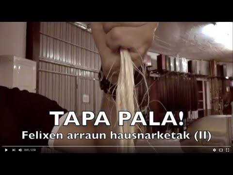 Tapa Pala! (2): Felix Aizpuruaren arraun hausnarketak
