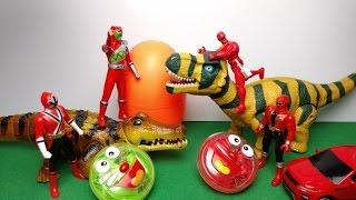 Siêu nhân gao đỏ bắt cá sấu ăn cắp trứng khủng long bất ngờ - power ranger red dinosaur toy for kids