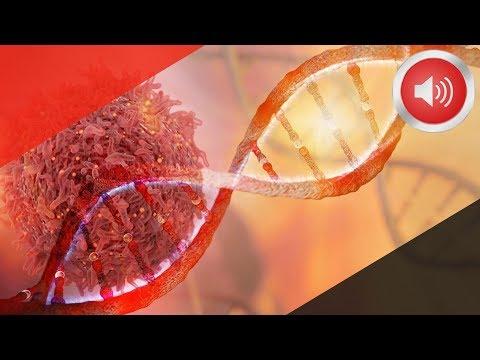 암세포 얼씬도 못하게 하는 놀라운 방법
