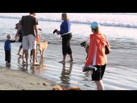 Huntington Beach Vacation With Beach House Dot Com