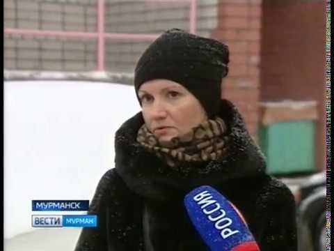 В Первомайском округе Мурманска прошла плановая проверка содержания придомовых территорий управляющими компаниями