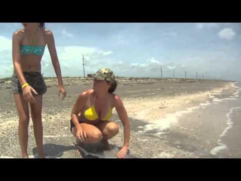 Девки на рыбалке ловят акулу