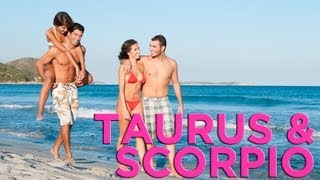 Are Taurus & Scorpio Compatible?   Zodiac Love Guide