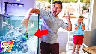NEW BABY SHARK FISH BITES ME UNDERWATER!!