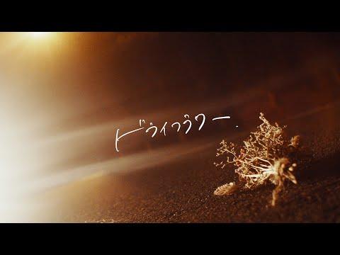 「ドライフラワー」/須澤紀信(MUSIC VIDEO)【公式】