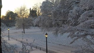 Snow Covers Abele Quad Time-lapse video