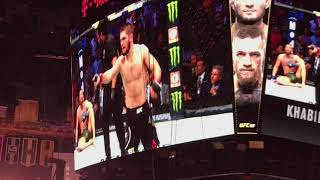 UFC 229 Khabib Vs. McGregor - round 4 and Brawl