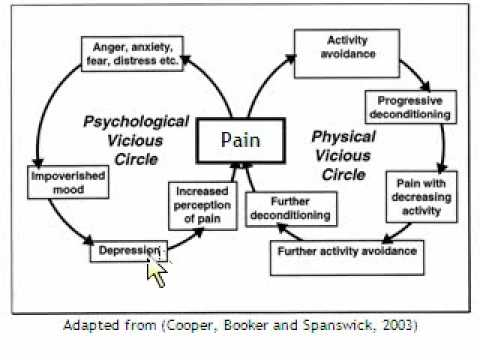 Brainworks Instructional Video: The Pain Cycle