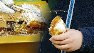명동 거리 아이스크림 붕어빵
