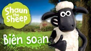 Biên soạn 11-15 [phần 4] - Những Chú Cừu Thông Minh