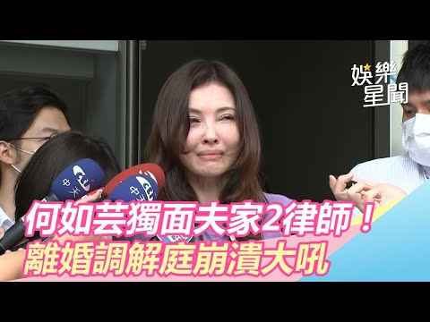何如芸獨面夫家2律師! 出庭哭吼被家暴「是他趕我出門的」|三立新聞網SETN.com