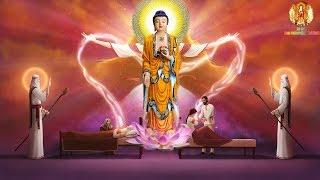 Phật Tại Nhà Sao Không Cung Kính Mà Tìm Kếm Đâu Xa - Nghe Lời Phật Dạy Tĩnh Tâm Và Lắng Đọng - #Mới