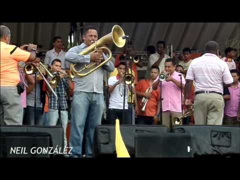 GRAN BANDA, ALBORADA PELAYERA -  JUNIO 28, 2014, PARTE 1