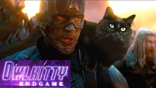 Avengers Endgame with my cat OwlKitty