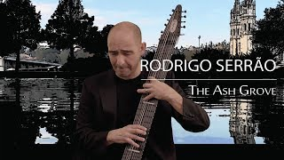 Rodrigo Serrão - The Ash Grove
