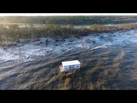 screenshot of youtube video titled SCETV Documentary | Sea Change