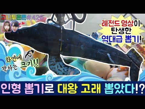 레전드 영상이 탄생한 역대급 뽑기!! 화면에 꽉차는 크기의 대왕 고래를 인형 뽑기로 뽑았다!?, 수유 인형 뽑기 (고니두욘몬 20180103) #426