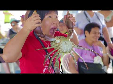 video Catch A Crab Tour
