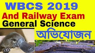 #10 General Science GK | অভিযোজন এবং অভিব্যক্তি | Science Gk MCQ Discuss(Railway/WBCS/SSC)