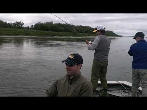Fishing Threesome - Landing King Salmon