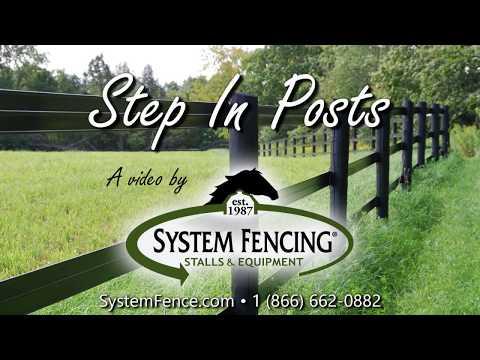 system equine logo