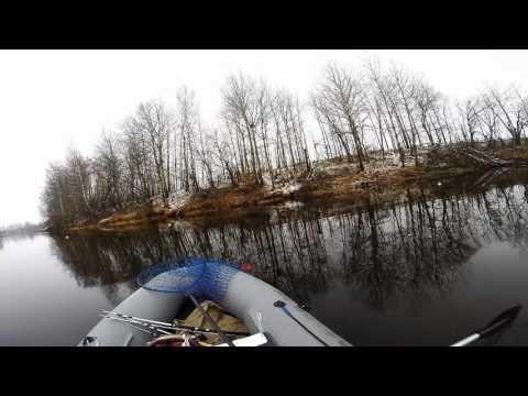 ловля щуки в костромской области видео