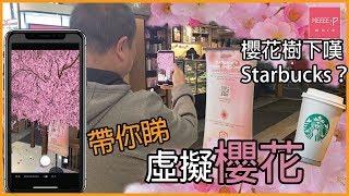 櫻花樹下嘆Starbucks? 帶你睇虛擬櫻花