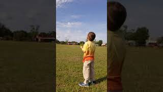 3 year old flying a kite excellent