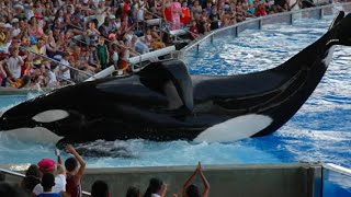 5 Things SEAWORLD Is Hiding From You!