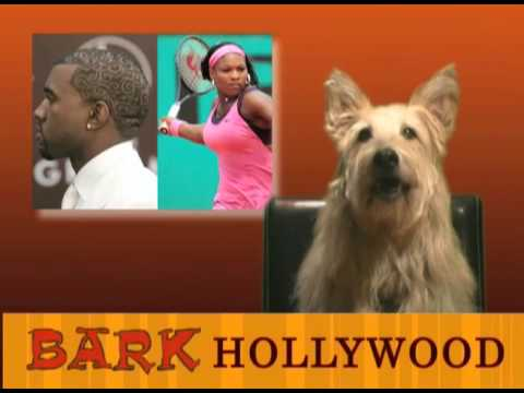 Bark Hollywood - Episode 1