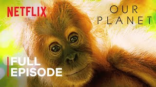 Our Planet | Jungles | FULL EPISODE | Netflix