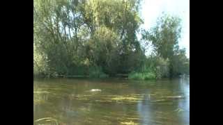 Respectful river fishing