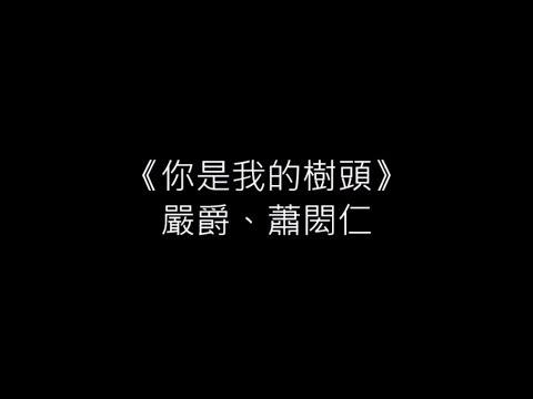 你是我的樹頭-嚴爵&蕭閎仁 (歌詞版)