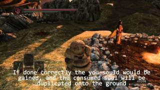 Dark Souls 2 Soul Duplication Glitch : cheap easy imperfect and ineffective tutorials