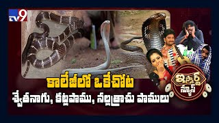 Snakes create ripples in government college, Telangana..