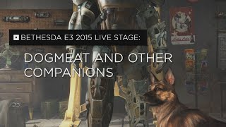 Fallout 4 – Dogmeat and Other Companions
