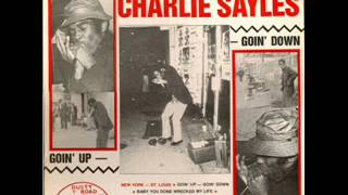 Charlie Sayles – The Raw Harmonica Blues of (Vinyl Rip) (1976)