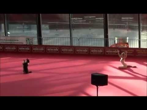Куче игра балет со својата партнерка