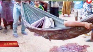 3 người Việt bị Campuchia bắn chết